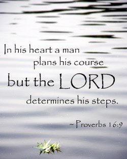 in-his-heart-a-man-plans-his-course-but-the-lord-determines-his-steps-bible-quote.jpg