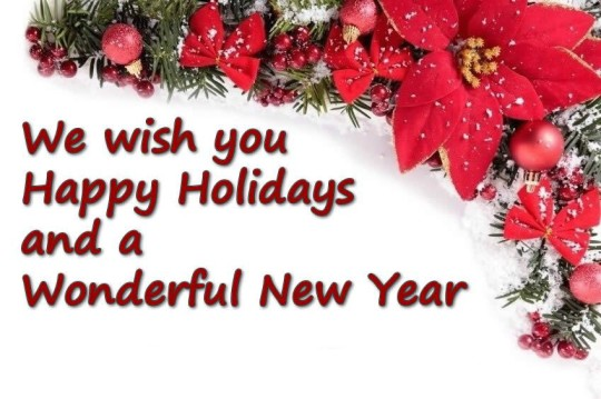 we-wish-you-happys-holiday-and-a-wonderful-new-year-540x359